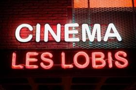 Les Lobis